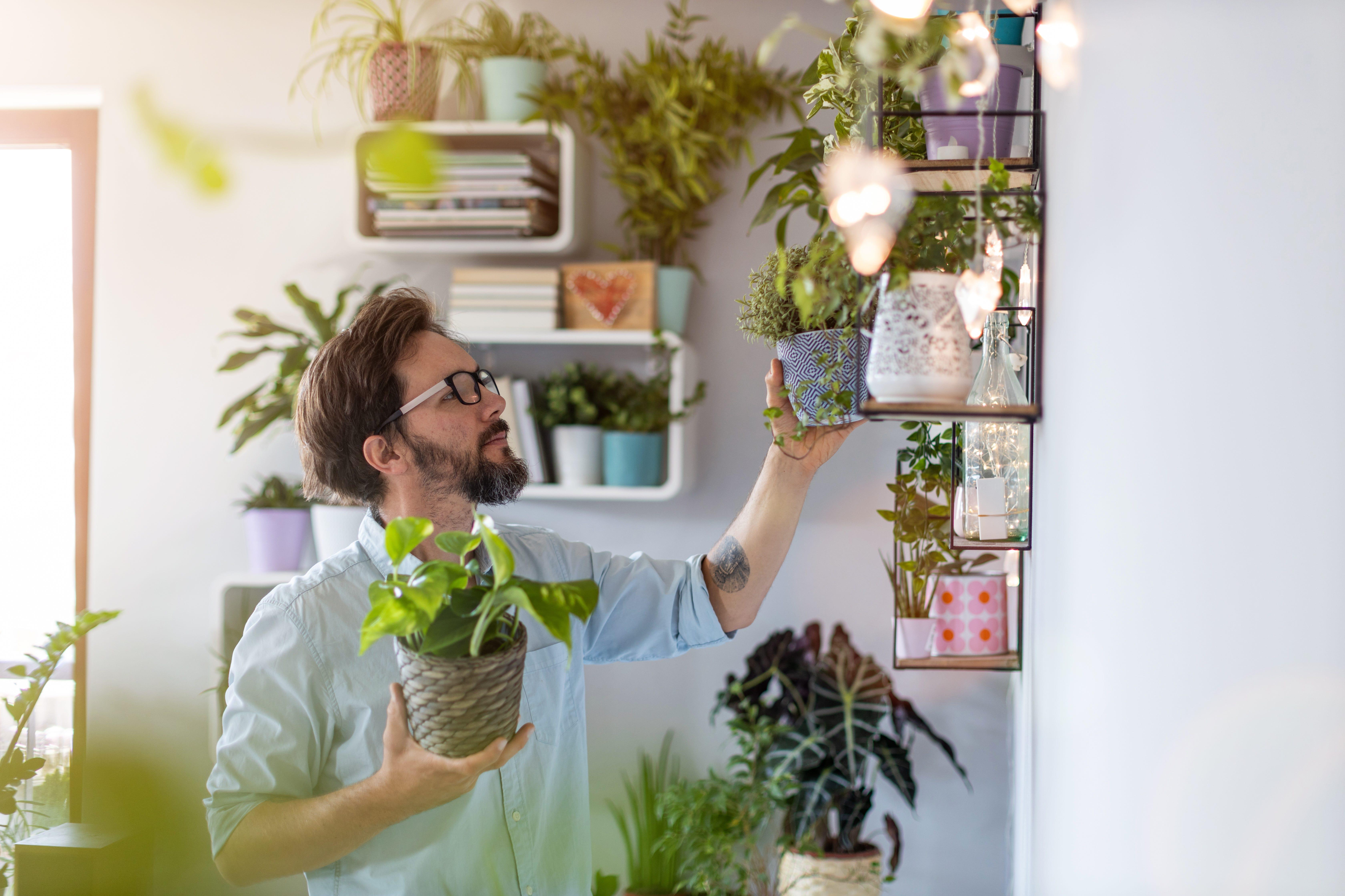Casa Mais Inteligente: como tornar sua casa mais funcional?